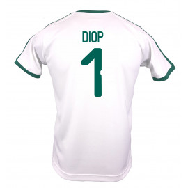 SENAGAL MEN'S HOME JERSEY WORLD CUP RUSSIA 2018 (WHITE) DIOP #1