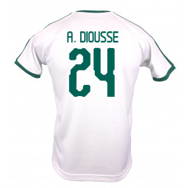 SENAGAL MEN'S HOME JERSEY WORLD CUP RUSSIA 2018 (WHITE) A. DIOUSSE #24