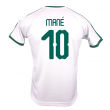 2c6a0a7cce1 SENEGAL MEN'S HOME JERSEY WORLD CUP RUSSIA 2018 (WHITE) MANE #10